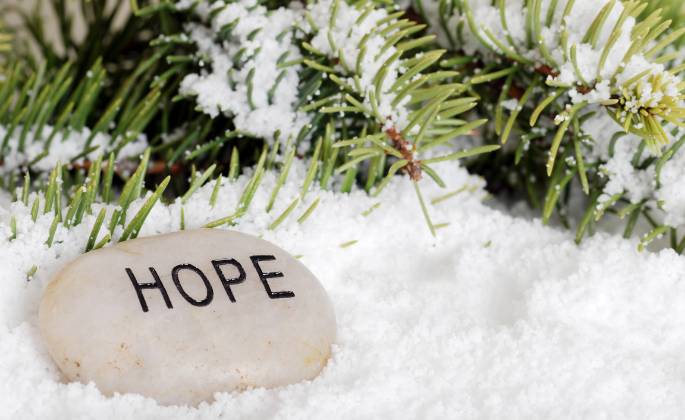 "A rock labeled ""Hope"" placed in the snow"