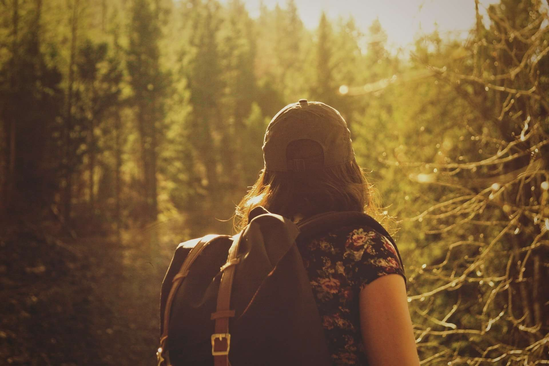 A female hiker in the woods